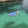 Image for The secret of the crystal clear waters of Majorca