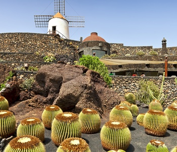 Image for Art in Lanzarote