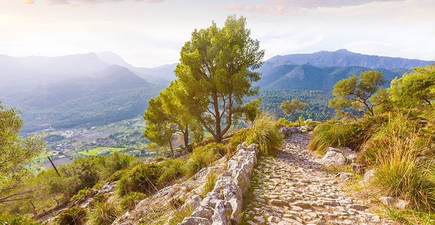 Image for Puig de María, a different visit during your holidays in Majorca