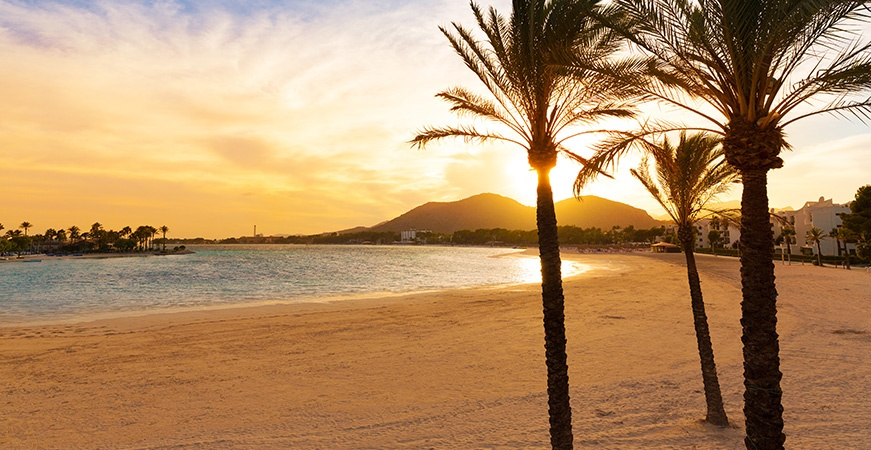 Image for Best beaches in the area of Pollensa