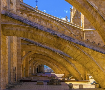 Image for Discover the terraces of Palma Cathedral