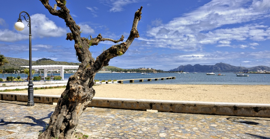 Image for THE INCREDIBLE EXPERIENCE OF WALKING ALONG THE PORT OF POLLENÇA'S PROMENADE