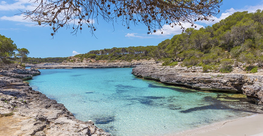 Image for Holidays in Mallorca: Holidays by the Sea and in the Mountain